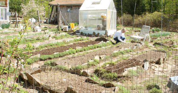 garden care with Celeste Longacre